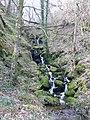 Waterfall in Coed Llystyn - geograph.org.uk - 375978.jpg