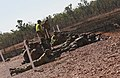 Weapons Company, Australian Army participate in bilateral live-fire training 150524-M-EB365-056.jpg