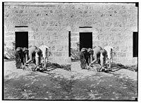 Weli of Budrieh at Sherafat and the preparing of a sacrifice. The sacrifice. LOC matpc.01416.jpg