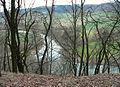 Weserschleife unterhalb Burgberg Hedemünden.jpg