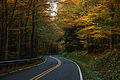 West-virginia-winding-autumn-trees-country-road - West Virginia - ForestWander.jpg