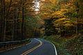 West-virginia-winding-autumn-trees-country-road - West Virginia - ForestWander.jpg