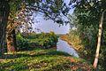Where the Canalazzo Stream meets the Crostolo Stream - Santa Vittoria, Gualtieri, Reggio Emilia, Italy - September 29, 2011 02.jpg