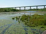 Whitefish Pond and Sault International Bridge 1.JPG