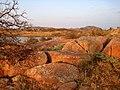 Wichita Mountains Wildlife Refuge, OK - Lake Jed Johnson - panoramio (3).jpg
