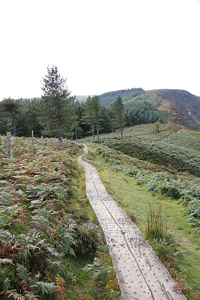 File:Wicklow Mountains National Park Spinc and Glenealo Valley White Route Boardwalk 07.JPG