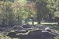 Wildpark Bruderhaus - panoramio (11).jpg