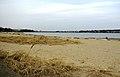 Wollaston-beach.jpg