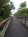 Wooden promenade, Lágymányos Bay Park, 2016 Újbuda.jpg