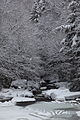 Wv-winter-snow-glade-creek-pub - West Virginia - ForestWander.jpg