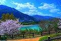 Yoshino River:吉野川 - panoramio.jpg