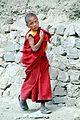 Young monk in Lamayuru (10000243273).jpg