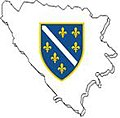 Zastava BiH.jpg