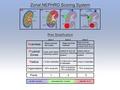 Zonal Ne.Ph.R.O. scoring system.tiff