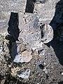 Zoravan church ruin (13).jpg