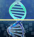 $1000 Genomes (27058471675).jpg