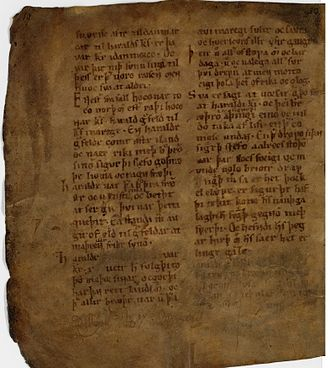Ágrip af Nóregskonungasögum - Ágrip AM 325 II 4to, folio 5v from the Arnamagnæan Manuscript Collection.
