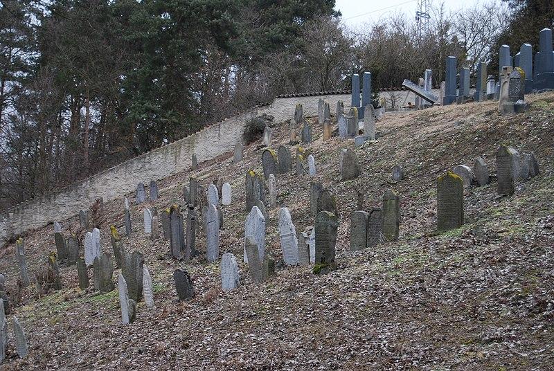 File:Židovský hřbitov v Mirovicích. (5).jpg