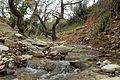 Ποταμάκι - panoramio.jpg