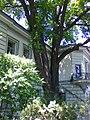 Будинок вчених 1 5.jpg