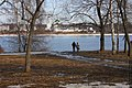 Весна в павловском парке.jpg
