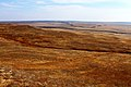 Вид с высоты на осеннюю степь - panoramio.jpg