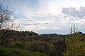 Вид із парку Знесіння.jpg