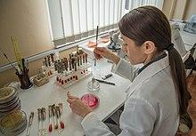 Классификация патогенных микроорганизмов 1