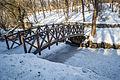 Дерев'яний місток взимку.jpg