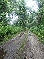 Жевахівщина, Прилуцький район, смт. Линовиця 74-241-5028 11.jpg