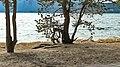 Казахстан. Боровое. Вид на озеро с пляжа.jpg