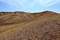 Козьи горы - panoramio (15).jpg