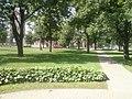 Лупалава, Магілёў, Belarus - panoramio (14).jpg