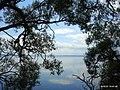 Озеро Нарочь - panoramio (1).jpg