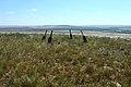 Остатки триангуляционного знака 294,8 м на горе Биктастау - panoramio.jpg