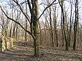 Парк в Красносілці 5.jpg