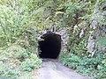 Посебни (геолошки) резерват природе Говјештица, Бања Стијена и Кањон Праче 40.jpg