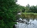 Река Колпь. - panoramio.jpg