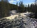 Река Летняя 1.jpg