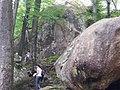 Скелі Поляницького регіонального парку (4).jpg