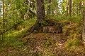 Сооружения форта Красная Горка 05.jpg