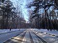 Улица Учёных зимой.JPG
