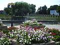 Цветы у речки в Задонске.JPG