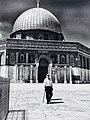 في القدس لو صافحت شيخاً او لمست بناية لوجدت منقوشاً على كفيك نص قصيدة المسجد الاقصى.jpg