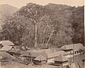 കൊല്ലത്തെ ആര്യങ്കാവ് ക്ഷേത്രം (1900).jpg