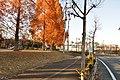 ときの広場 - panoramio.jpg