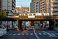 今宮戎駅 - Flickr - m-louis.jpg