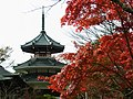 南朝妙法殿(金輪王寺・吉野朝皇居跡) Nanchō-myōhōden, the site of Kinrin-nōji 2011.11.27 - panoramio.jpg