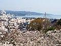 富山湾と桜(The view of Toyama Bay from Asahiyama Park) 12 Apr, 2015 - panoramio.jpg