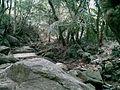 小溪 - panoramio.jpg